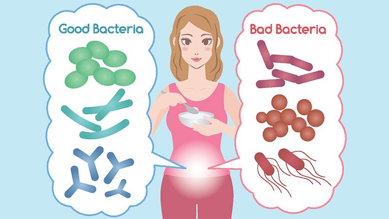تاثیر پروبیوتیک ها روی بیماری های مقعدی