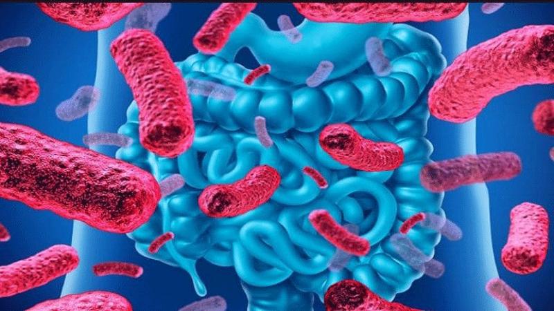 علت  گاستروانتریت ویروسی